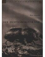 Der Fichtenborkenkfer (A betűző szú)