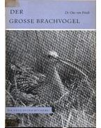 Der Grosse Brachvogel (A nagy póling)
