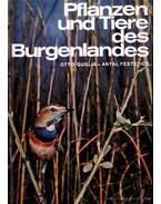 Pflanzen und Tiere des Burgenlandes
