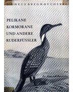 Pelikane Kormorane und andere Ruderfüssler (Pelikán, kormorán és más gázló madarak)