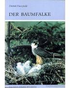 Der Baumfalke (A kabasólyom)