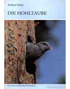 Die Hohltaube (A kék galamb)