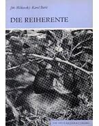 Die Reiherente (A kontyos réce)