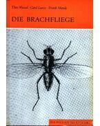 Die Brachfliege (A Búza-csíra légy)