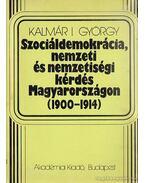 Szociáldemokrácia, nemzeti és nemzetiségi kérdés Magyarországon 1900-1914
