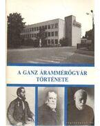 A Ganz Árammérőgyár története