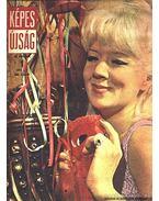 Képes Újság 1971, XII. évfolyam (teljes)