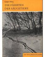 Die Fahrten der Saugetiere (Az emlősállatok nyomai)