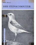 Der Steinschmatzer (A hantmadár)
