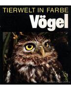 Tierwelt in Farbe- Vögel (Színes állatvilág- Madarak)