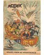 Veszélyben az aranykincs (Mozaik 1973/8.)
