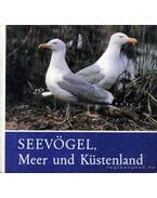 Seevögel Meer und Küstenland