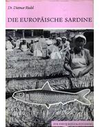 Die Europaische Sardine