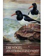 Die Vögel an Strand und Watt