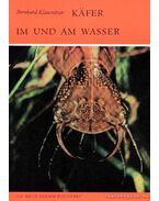 Käfer im und am Wasser (Bogarak vízen és vízben)