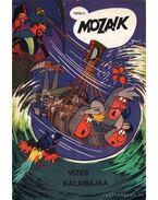 Vizes kalamajka (Mozaik 1976/1)