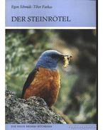 Der Steinrötel 1988. (Kövirigó)