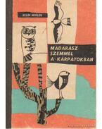 Madarász szemmel a Kárpátokban