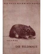 Die Feldmaus (A mezei pocok)