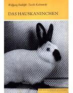 Das Hauskaninchen (A házinyúl)