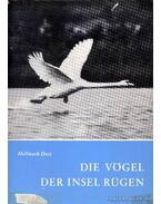 Die Vögel der Insel Rügen