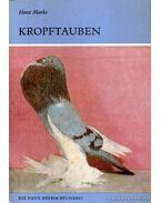 Kropftauben (A golyvás galamb)