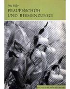 Frauenschuh und Riemenzunge 1970.