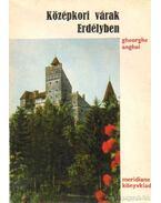 Középkori várak Erdélyben