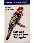 Sittiche und andere Papageien (Vörösfarkú és másféle papagájok)