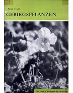 Gebirgspflanzen (Hegyivirágok)