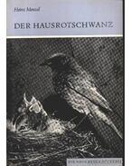 Der Hausrotschwanz 1983.