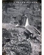 Die Wildganse Europas (Európai vadludak)