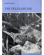 Die Feldlerche (A búbos pacsirta)-1975