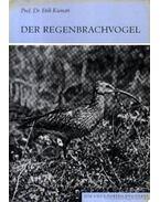 Der Regenbrachvogel (A kis póling)