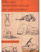 Ruhe und Schlaf bei Säugetieren (CSend és pihenés a vadállatok mellett)