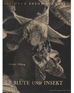 Blüte und Insekt (A virág és a rovar)