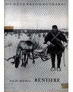Rentiere (A rénszarvas)
