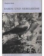 Raben- und Nebelkrahe (Kormos- és dolmnyo varjú)