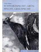 Schwarzspecht, Grünspecht, Grauspecht (A zöld-,fekete-,szürke harkály) 1973