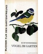 Vögel im Garten (Kerti madarak)
