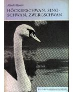 Höckerschwan, Singschwan, Zwergschwan (A bütykös hattyú, az énekes hattyú és a kis hattyú)