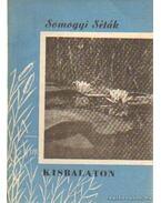 Kisbalaton