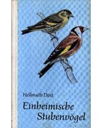 Einheimische Stubenvögel