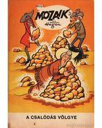 A csalódás völgye (Mozaik 1973/11)