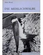 Die Mehlschwalbe (A molnár fecske)