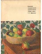 A Sevcsenko, T. G. Kazah Állami Művészgaléria (orosz nyelvű)