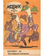 Botrány az ópiumbarlangban (Mozaik 1974/1.)