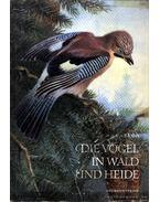 Die Vögel in Wald und Heide
