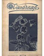 Vasárnap 1926. április 18. X. évfolyam 8. szám