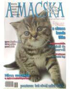 A Macska 2006. szeptember-október ( újság)